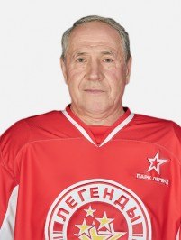 Голиков Владимир Николаевич
